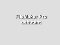 formation filemaker pro débutant